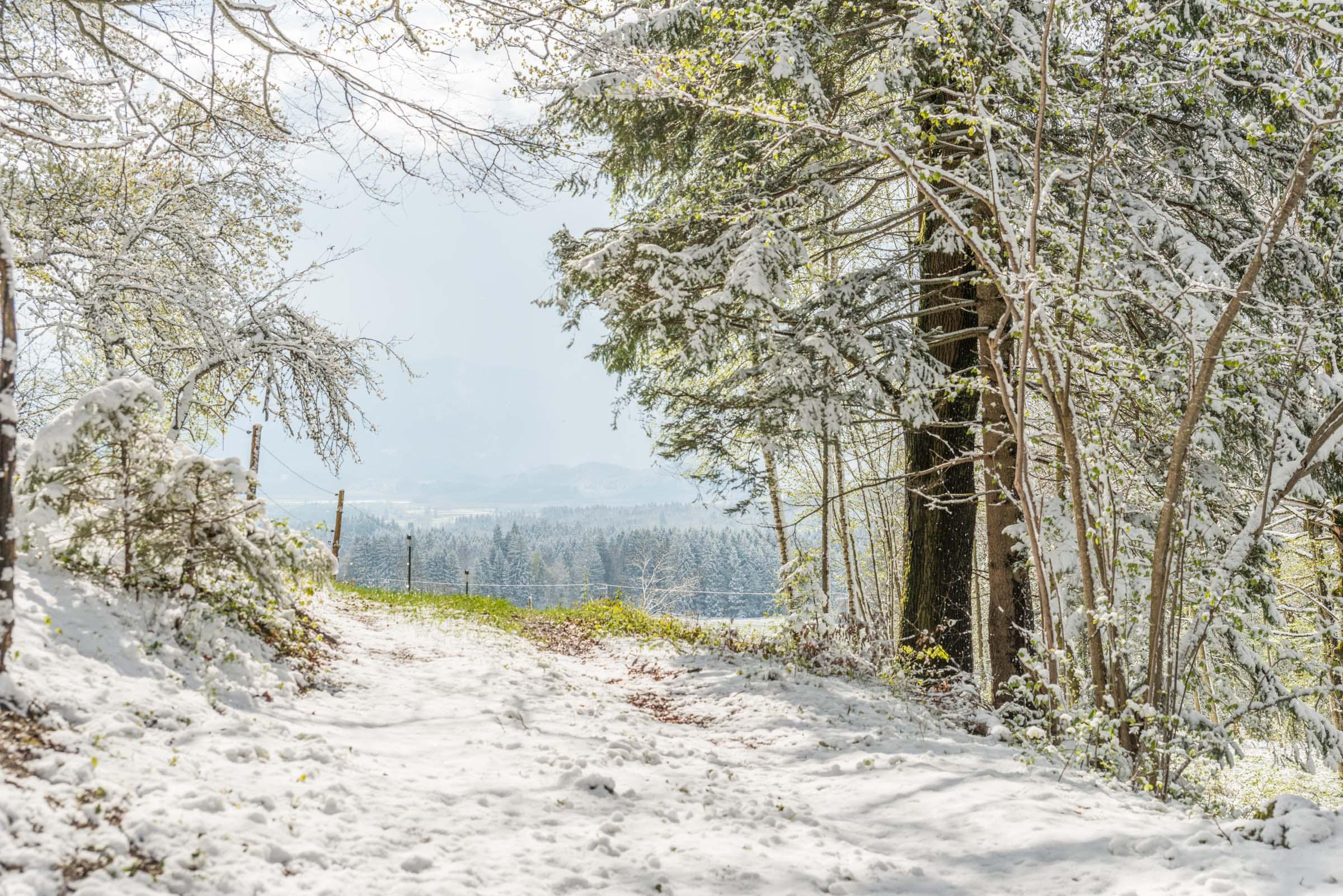 Vitalhotel Sonnen Aktivurlaub im Winter